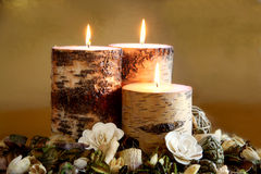 Winter Potpourri. Three lit birch candles nestled among some fragrant winter potpourri against a warm, golden background. Vertical version also available. Winter royalty free stock images