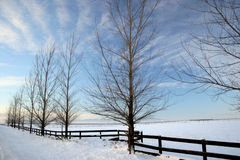 Winter on the Prairie. Photo of a winterscape on the Rathdrum Prairie in North Idaho Stock Photo