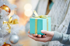 Winter present for cristmas Royalty Free Stock Image