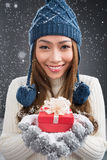 Winter present Royalty Free Stock Photography