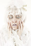 Winter Princess Stock Photography