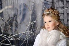 Winter Princess Royalty Free Stock Images