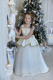 Winter princess at the Christmas tree Stock Images