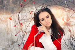 Winter Princess with Rosehip Branch Stock Images