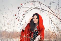 Winter Princess with Rosehip Branch Stock Photos