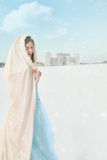 Winter princess in the snow Royalty Free Stock Images