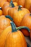 Winter pumpkin Royalty Free Stock Photos