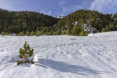 Winter pyrenes landscape near Roc Del Quer trekking trail, Village of Canillo. Principality of Andorra Stock Images