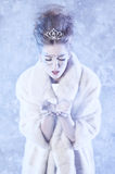 Winter Queen. Beautiful girl in winter Royalty Free Stock Photo