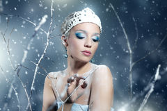 Winter Queen. On dark background Royalty Free Stock Images