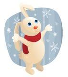 Winter rabbit Stock Photos