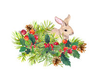 Winter rabbit, flowers, pine tree, mistletoe. Christmas watercolor for greeting card with cute animal. Winter rabbit, flowers, pine tree, mistletoe. Christmas stock photo