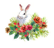 Winter rabbit, flowers, pine tree, mistletoe. Christmas watercolor for greeting card with cute animal Stock Photos