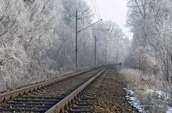 Winter railroad. Electric railroad in the winter wit icy trees around Stock Images