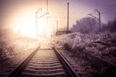 Winter railroad landscape Stock Images