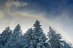 Winter rainbow Royalty Free Stock Photos