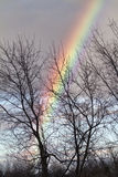 Winter Rainbow Royalty Free Stock Images
