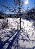 Winter Ray Stock Photos