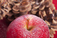 Winter red apple and pine cones Stock Photo