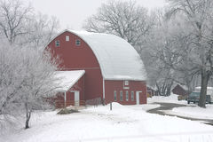 Winter Red Barn. Red barn on a foggy morning in winter with frost on the trees Stock Photo