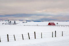Winter red barn with fence Stock Image