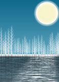 Winter reflection. Illustration of winter forest at night reflected over the water Stock Photo
