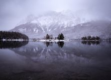 Winter reflection royalty free stock images