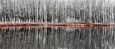 Winter Reflection Scene Stock Photo