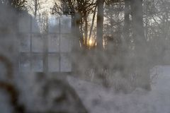 Winter reflection in a windowpane Royalty Free Stock Image