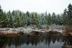 Winter Reflections Royalty Free Stock Photos