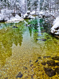 Winter reflections in a cold mountain stream, Slovenian Alps Royalty Free Stock Images