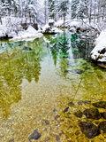 Winter reflections in a slow mountain stream Stock Image