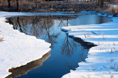 Winter Reflections during Thaw Royalty Free Stock Image