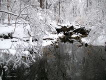 Winter-Reflexionen lizenzfreies stockfoto