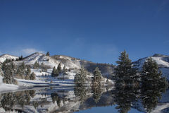 Winter-Reflexionen lizenzfreies stockbild