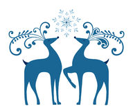 Winter  Reindeer Royalty Free Stock Photos