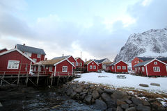 Winter in Reine royalty free stock photography