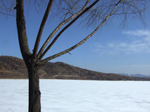 Winter reservoir scenery Royalty Free Stock Photo