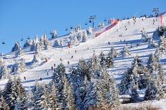 Winter resort Kopaonik, Serbia Royalty Free Stock Photography