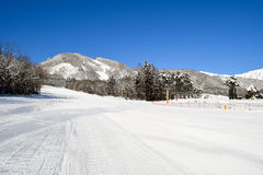 Winter resort trail early morning Stock Photography