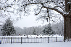 Winter Resting Place Stock Photos