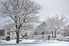 Winter in Reykjavik stockfotografie
