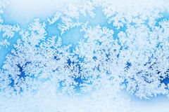 Winter rime background Royalty Free Stock Photography