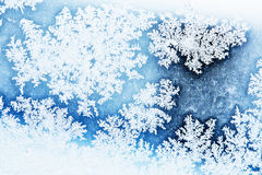 Winter rime background Royalty Free Stock Image