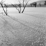 Winter river. Frozen river whit full of snow flower , shooting in bashang of Hebei CHINA royalty free stock image