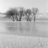 Winter river. Frozen river with full of snow flower ,shooting in bashang of Hebei CHINA Royalty Free Stock Photography
