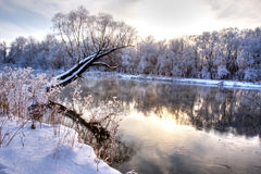 Winter river. With a tree standing alone Royalty Free Stock Images