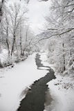 Winter river. An river in winter seasson , in the city of Slanic Moldova, december Royalty Free Stock Photos