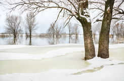 Winter river Royalty Free Stock Photos