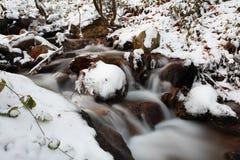 winter river zdjęcie royalty free